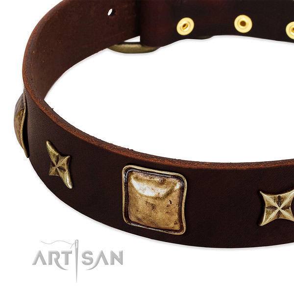Reliable hardware on full grain genuine leather dog collar for your pet