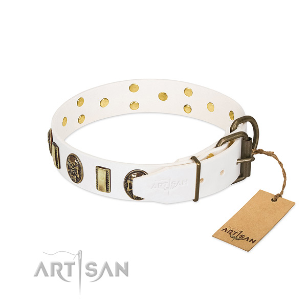 Corrosion resistant buckle on full grain genuine leather collar for stylish walking your canine
