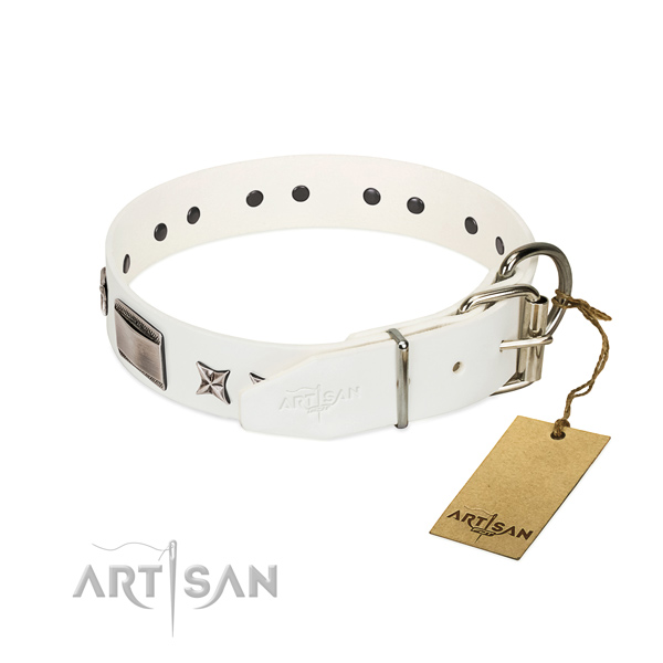 Amazing collar of full grain leather for your lovely pet