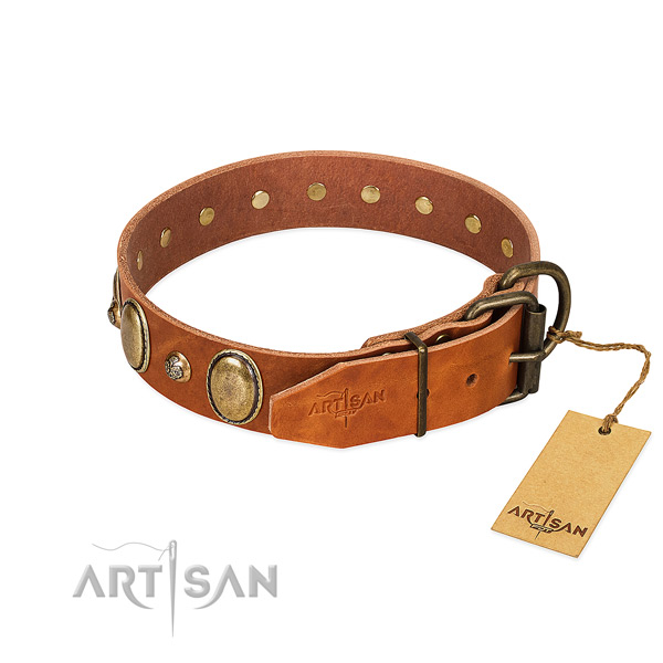 Exceptional leather dog collar with rust resistant buckle