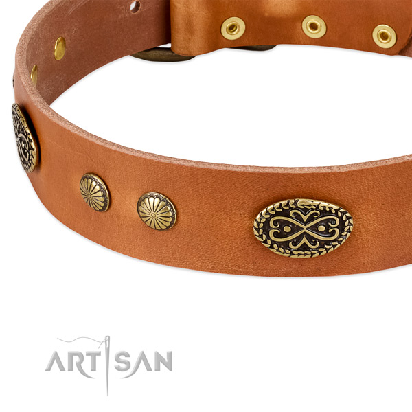 Rust resistant adornments on full grain natural leather dog collar for your doggie