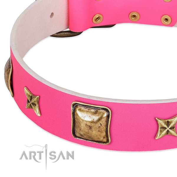 Full grain leather dog collar with stylish decorations