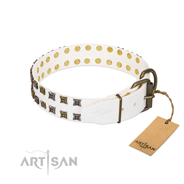 Full grain natural leather collar with extraordinary embellishments for your pet