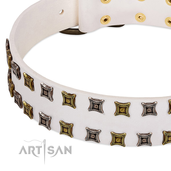 Full grain leather dog collar with studs for your stylish canine