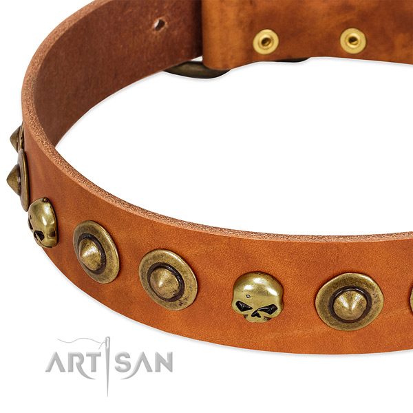 Significant decorations on genuine leather collar for your four-legged friend