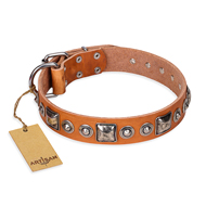 """Era of Future"" FDT Artisan Handcrafted Tan Leather Pitbull Collar with Decorations"