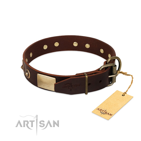 Reliable fittings on stylish walking dog collar