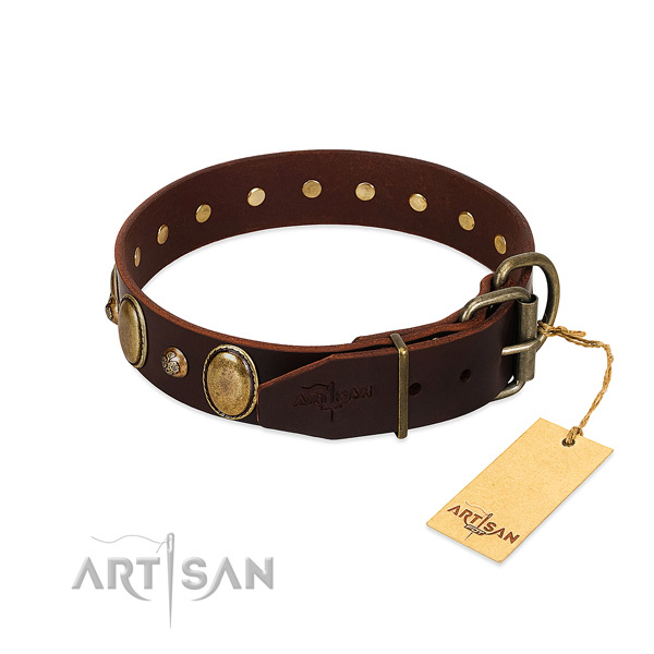Strong hardware on natural genuine leather collar for stylish walking your canine