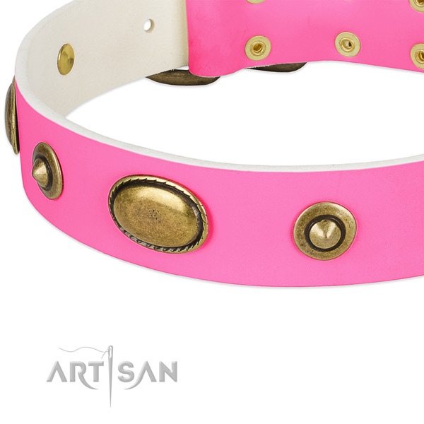 Corrosion resistant studs on natural leather dog collar for your pet