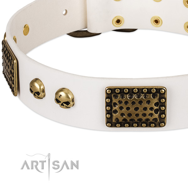 Corrosion proof adornments on leather dog collar for your dog