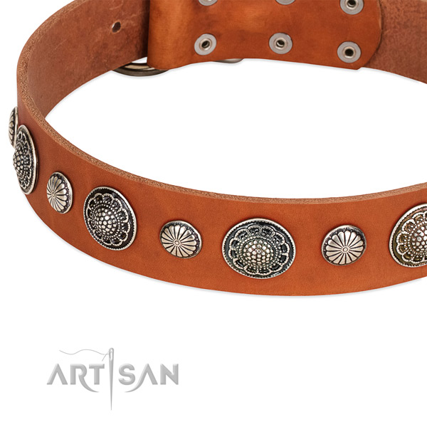 Full grain leather collar with rust resistant fittings for your handsome canine