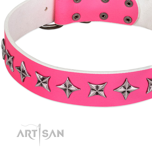 Daily use studded dog collar of best quality genuine leather
