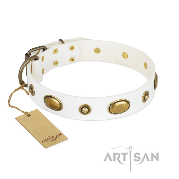 Stylish full grain natural leather collar for your canine