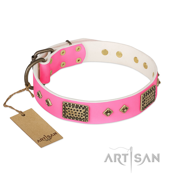 Easy wearing leather dog collar for walking your canine