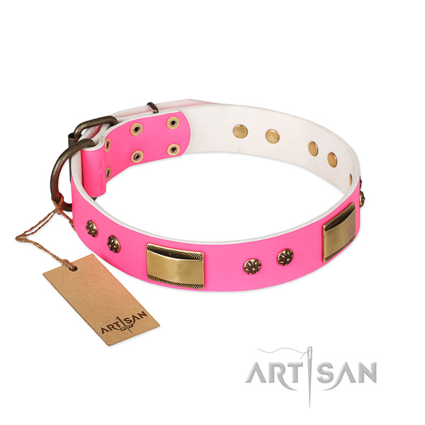 Top quality full grain leather collar for your pet