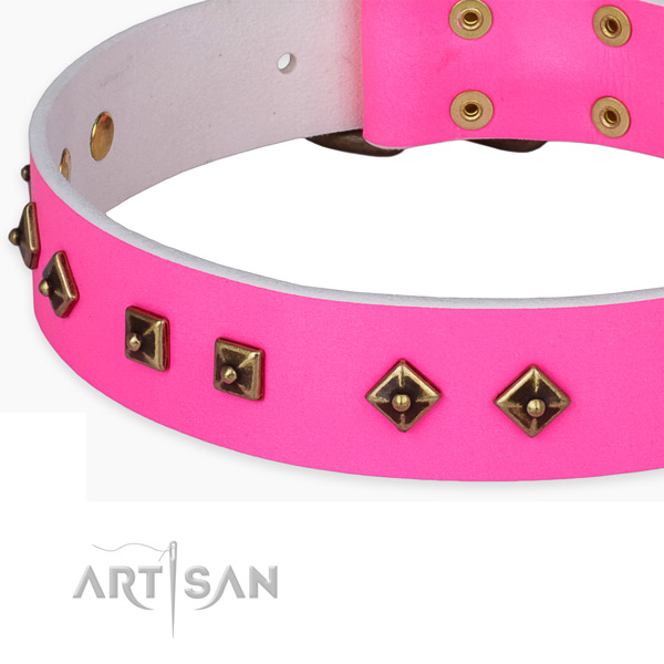 Extraordinary full grain leather collar for your lovely doggie
