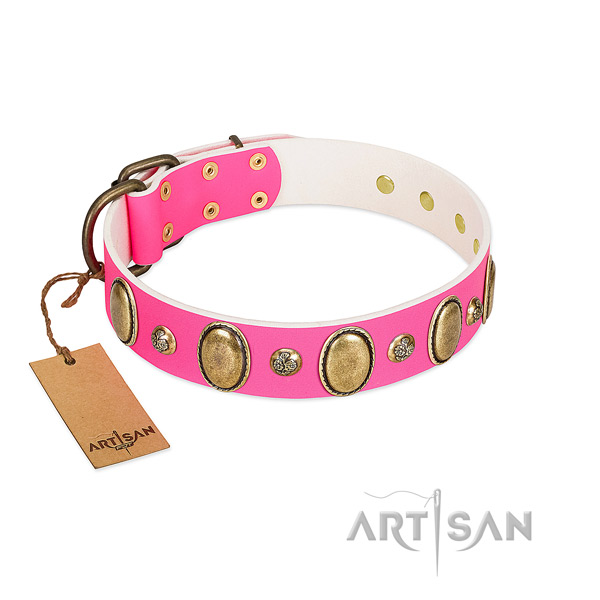 Stylish walking flexible full grain leather dog collar with decorations