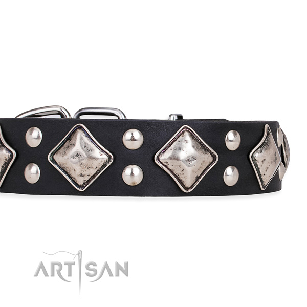 Full grain genuine leather dog collar with trendy reliable studs