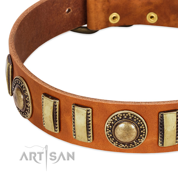 Durable natural leather dog collar with rust-proof fittings