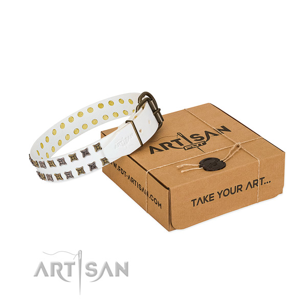 Full grain natural leather collar with incredible decorations for your canine