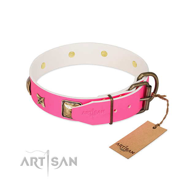 Corrosion resistant fittings on full grain genuine leather collar for basic training your pet