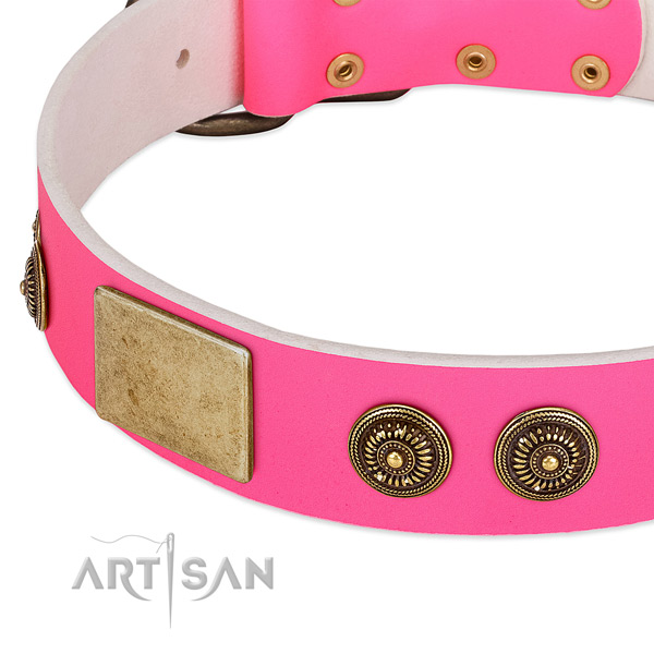 Inimitable dog collar handcrafted for your stylish pet