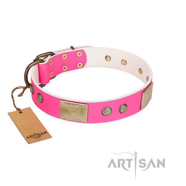 Easy adjustable leather dog collar for walking your canine