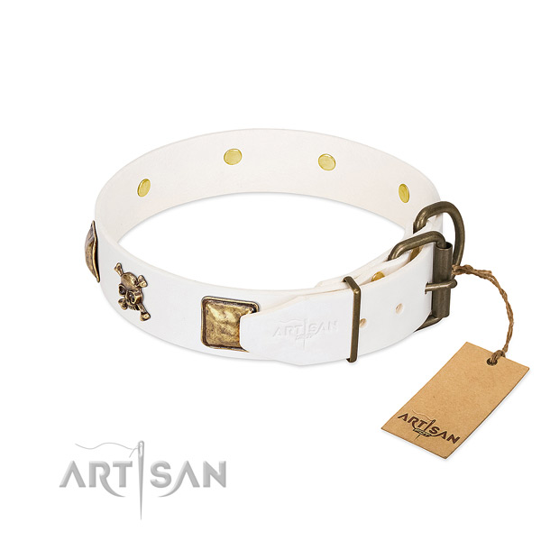 Top notch natural leather dog collar with rust resistant embellishments