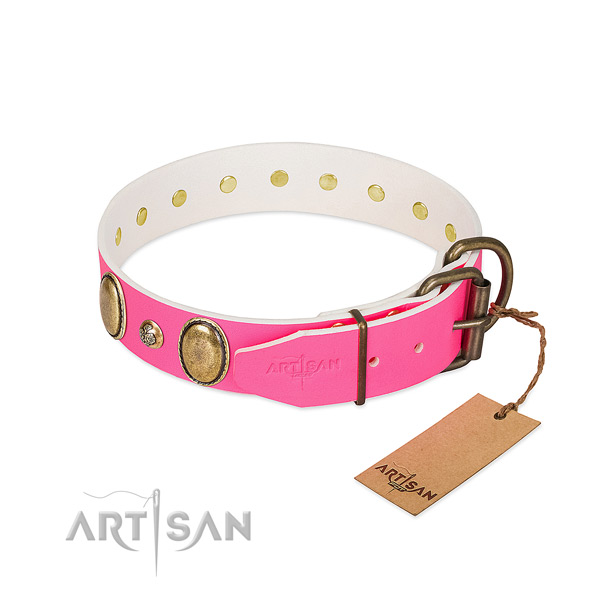 Everyday walking high quality full grain leather dog collar