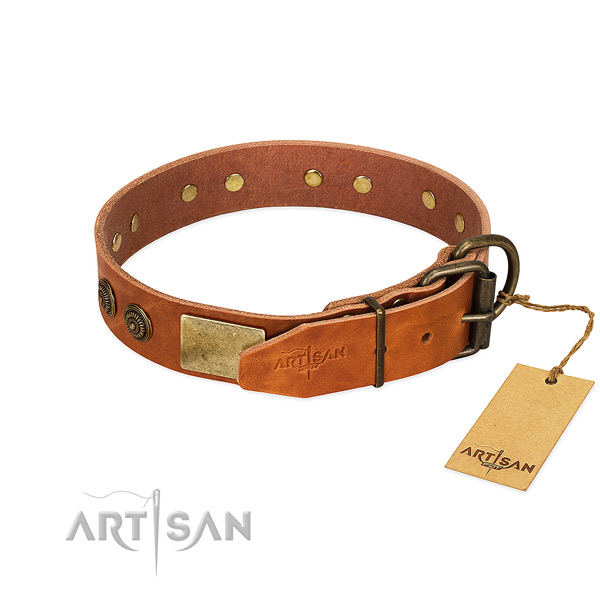 Durable buckle on full grain natural leather collar for daily walking your four-legged friend