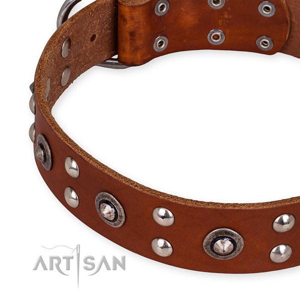 Genuine leather collar with strong hardware for your handsome canine