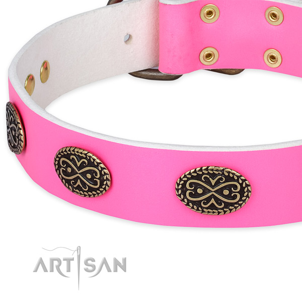 Full grain leather dog collar with decorations for daily use