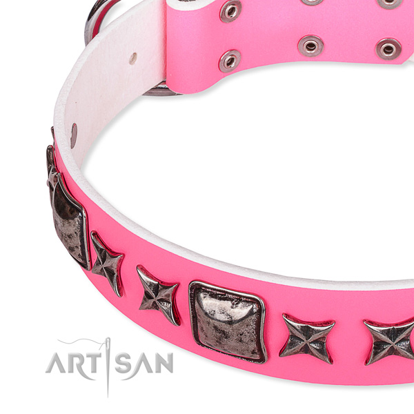Comfy wearing embellished dog collar of durable full grain natural leather