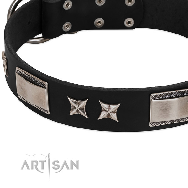 Flexible full grain natural leather dog collar with durable fittings