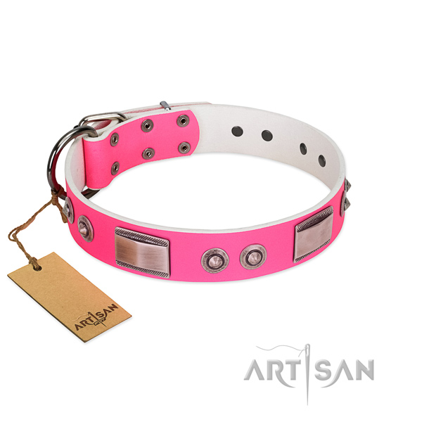 Remarkable leather collar with decorations for your pet