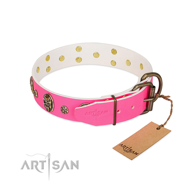 Durable buckle on natural leather collar for walking your four-legged friend