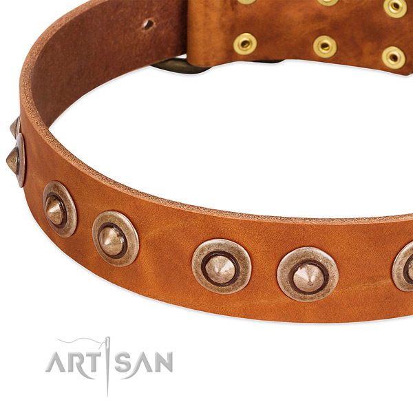 Rust-proof adornments on full grain leather dog collar for your doggie