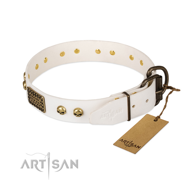 Easy wearing full grain natural leather dog collar for everyday walking your dog