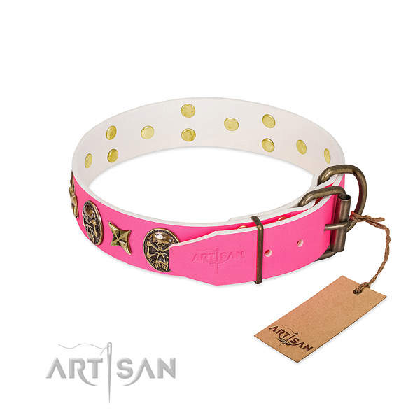 Corrosion resistant traditional buckle on full grain natural leather collar for daily walking your canine
