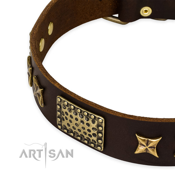Genuine leather collar with rust resistant fittings for your attractive pet