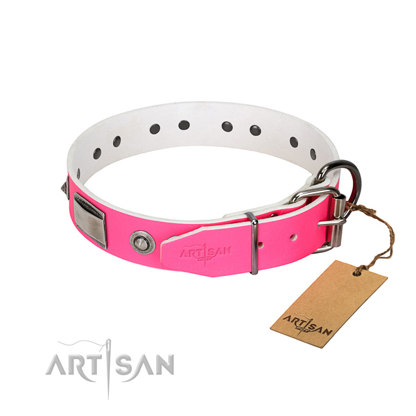 Top notch dog collar of full grain natural leather with embellishments