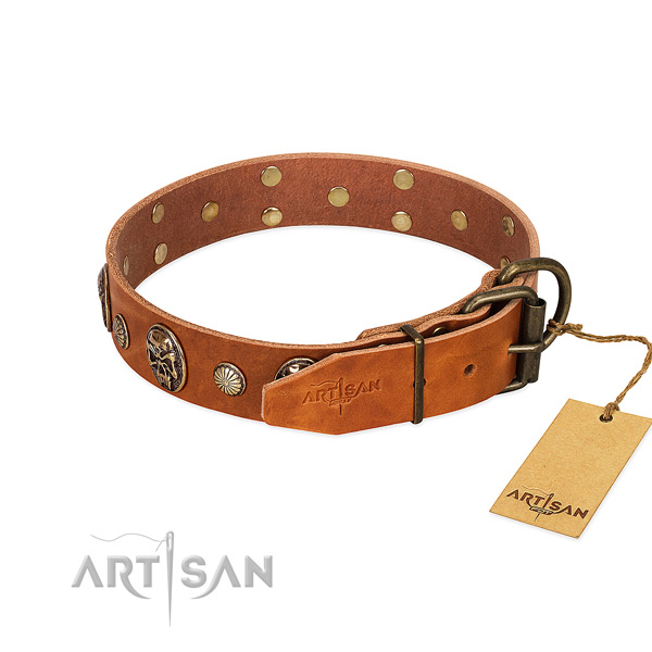 Rust resistant hardware on natural genuine leather collar for walking your doggie