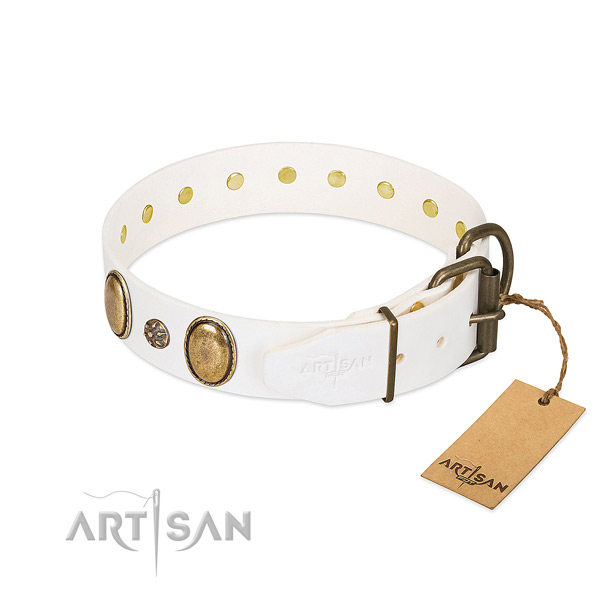 Daily use high quality leather dog collar with embellishments