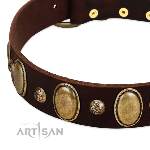 Full grain genuine leather dog collar with fashionable studs