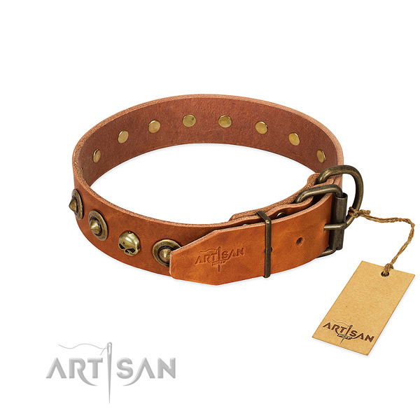 Full grain genuine leather collar with top notch adornments for your doggie