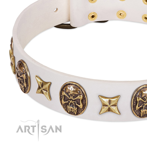 Studded dog collar handmade for your impressive canine