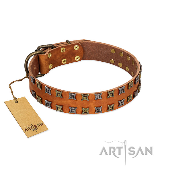 Soft natural leather dog collar with studs for your dog