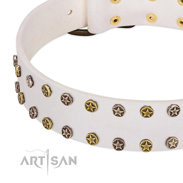 Amazing studs on full grain natural leather collar for your canine