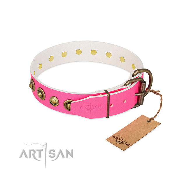 Full grain leather collar with significant adornments for your canine