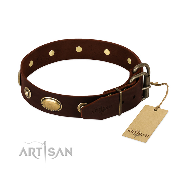 Corrosion proof decorations on leather dog collar for your four-legged friend